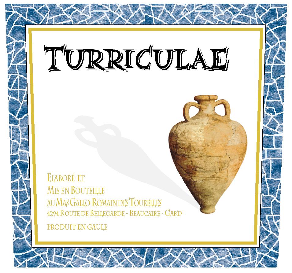 FORTON1-46818-TURRICULAE